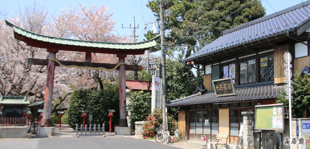 【埼玉】鷲宮神社の鳥居が倒壊 YouTube動画>1本 ->画像>45枚